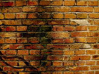 National Standards - just another brick in the wall?